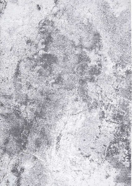 Carpet Decor :: Carpet Moon Light Gray 160x230